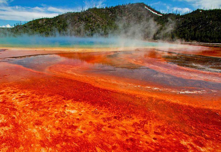 Parque Nacional de Yellowstone, EE.UU., el 22 de junio de 2011. (Jim Urquhart / Reuters)