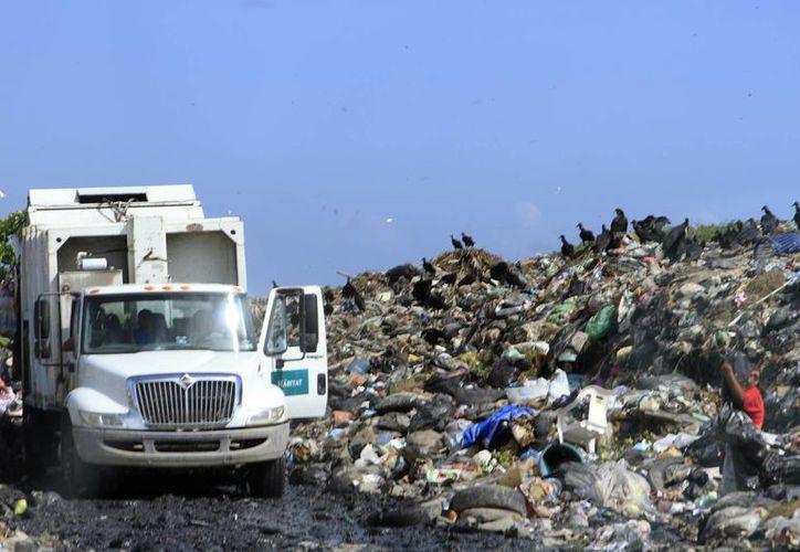 Las multas son de mil 500 pesos por colocar basura en camellones. (Paloma Wong/ SIPSE)