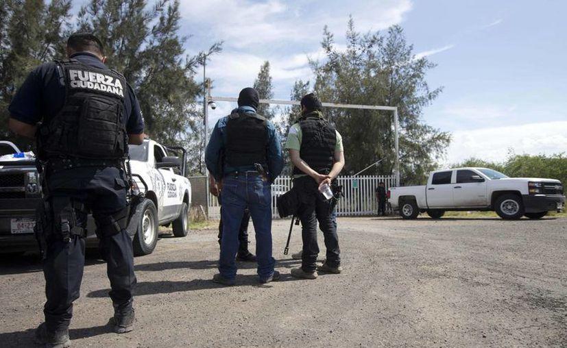 El gobernador de Michoacán, Salvador Jara, aseguró que el choque registrado en Tanhuato no representa una nueva ola de violencia en el estado. (AP)