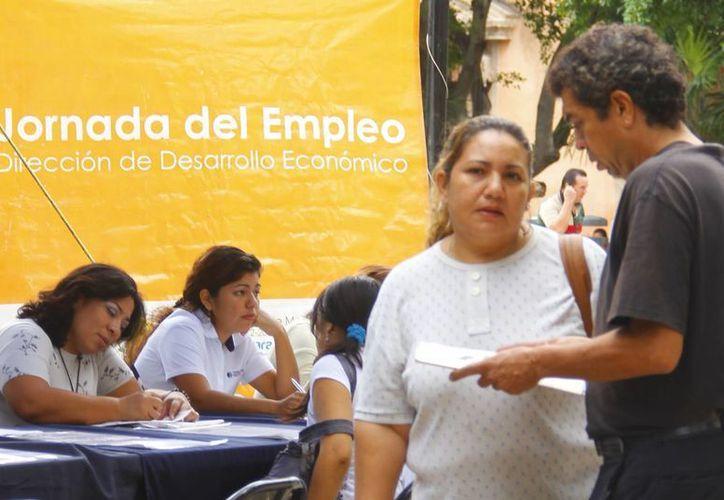 Las acciones municipales iniciarán el próximo mes de abril. (Juan Albornoz/SIPSE)