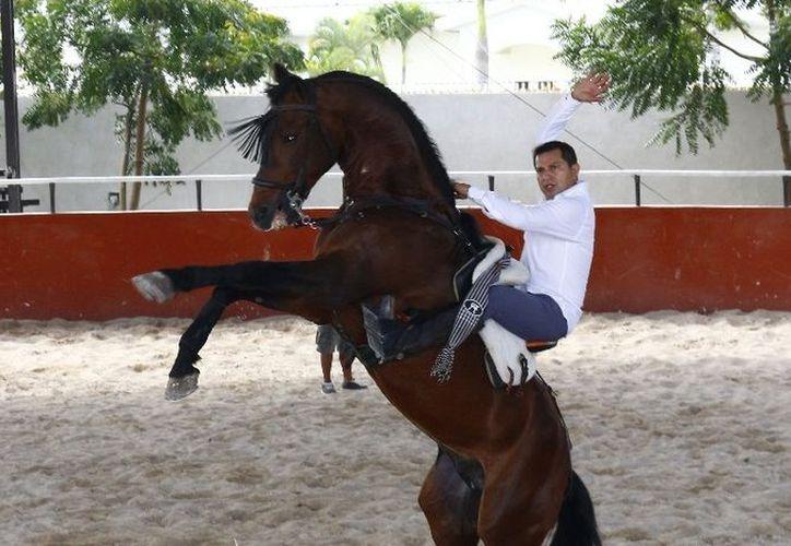 El yucateco, Cuauhtémoc Ayala tiene muy claro que su destino no estaba detrás de un escritorio, sino en el ruedo. (Foto: Anel Calderas)