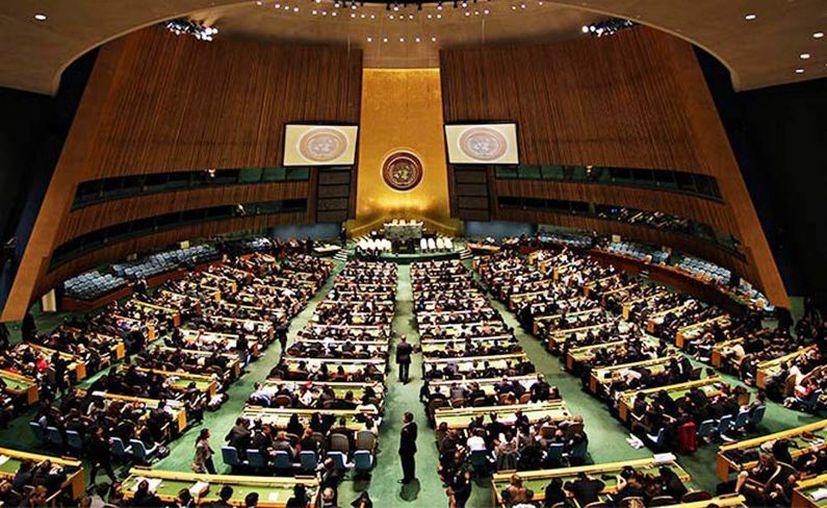 La ONU le pide cuentas a México por ataques a activistas y periodistas. (Excelsior)