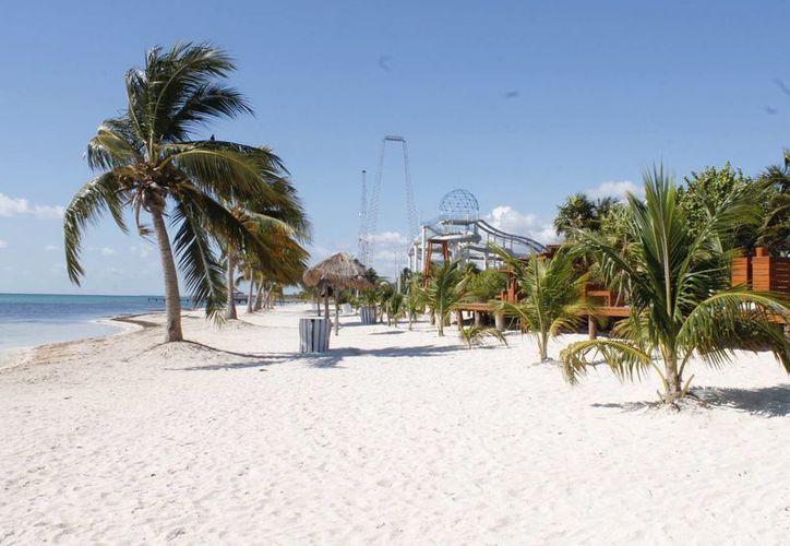 La playa fue seleccionada para buscar su certificación. (Luis Soto/SIPSE)