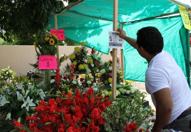 La Profeco realizó una vigilancia y colocó en zonas visibles los precios de los productos. (Tomás Álvarez/SIPSE)