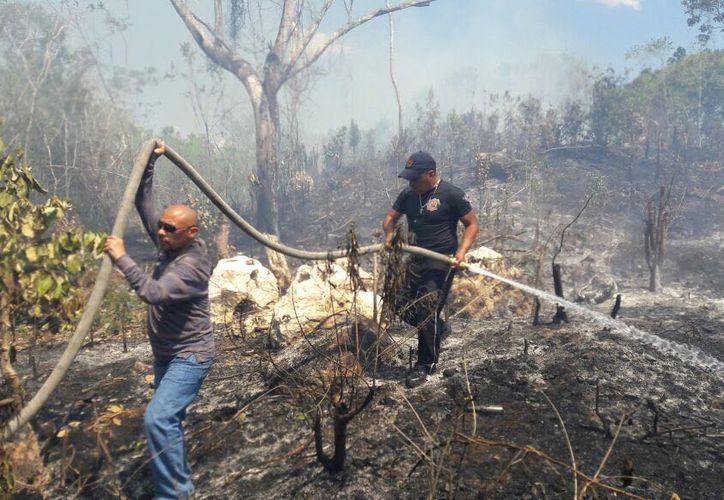 Elementos de Seguridad Pública apoyan a los bomberos en el combate a las llamas en los derechos de vía.
