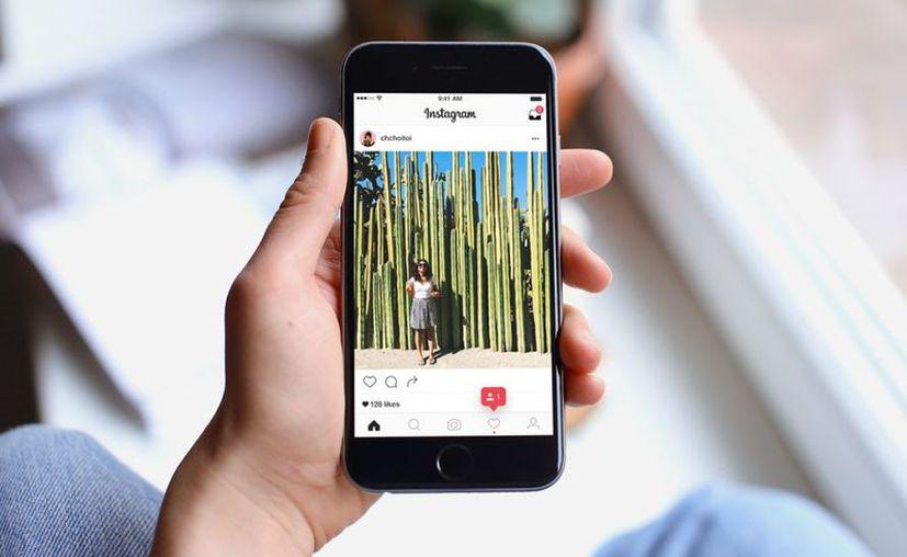 El estudio examinó una pequeña muestra de 166 cuentas de Instagram. (Contexto)