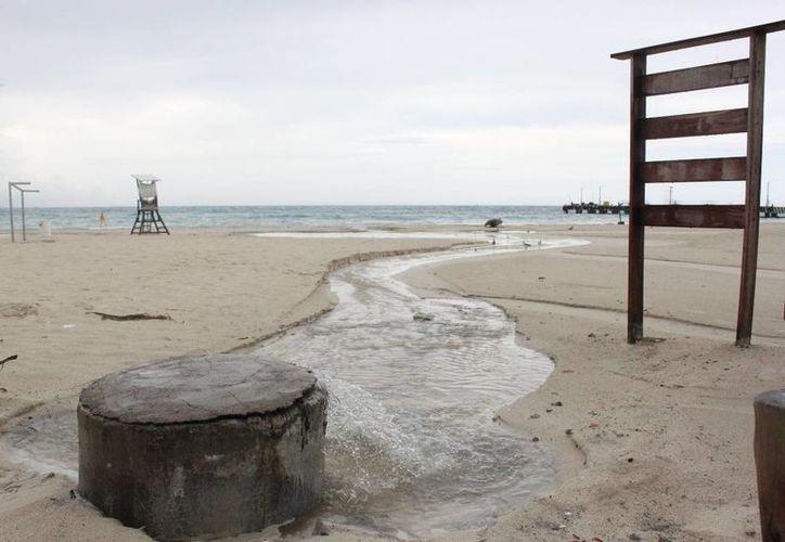 Las obras pretenden prevenir que las aguas del drenaje rebosen y den una mala imagen turística. (Adrián Barreto/SIPSE)