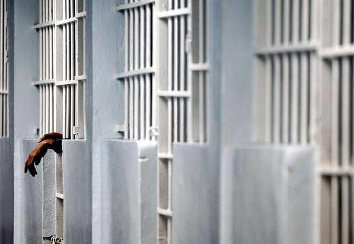 """Rolando Rodrigo González Moreno, alias """"El Compadrón"""", operaba una célula criminal de Ismael Zambada para el trasiego de drogas por la Península de BC. (Excelsior)"""