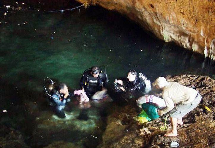 El investigador de la UNAM, Francisco Bautista, asegura que el agua subterránea de Yucatán no es de buena calidad, Imagen de contexto de un operativo de limpieza en un cenote de Yucatán. (Milenio Novedades)