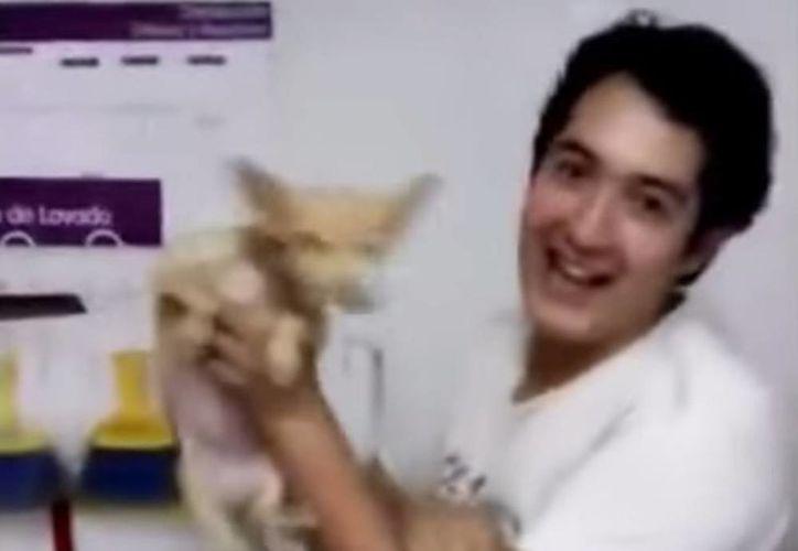 Imagen de uno de los dos empleados de la cadena de tiendas +Kota que fueron grabados maltratando a los animales. (Captura de pantalla de YouTube)
