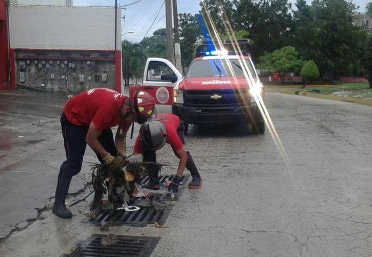 Se han suspendido descansos y permisos a los elementos de Bomberos en Chetumal. (Foto: Contexto/SIPSE)