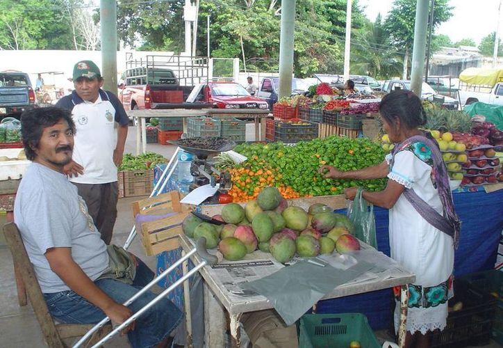 El chile habanero paso de 20 pesos el kilo a 60 pesos. (Carlos Yabur/SIPSE)