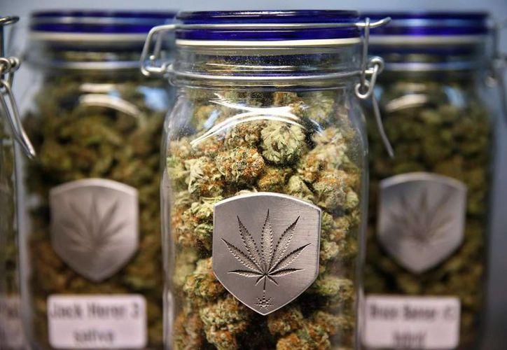 La legalización de la marihuana medicinal ha causado polémica en muchos países. Imagen de unas cepas de marihuana a la venta en un dispensario de Denver. (Archivo/AP)