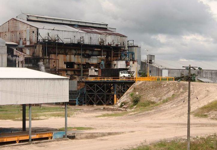 Por la falta de recursos y las reglas de operación detuvieron el proyecto. (Carlos Horta/ SIPSE)
