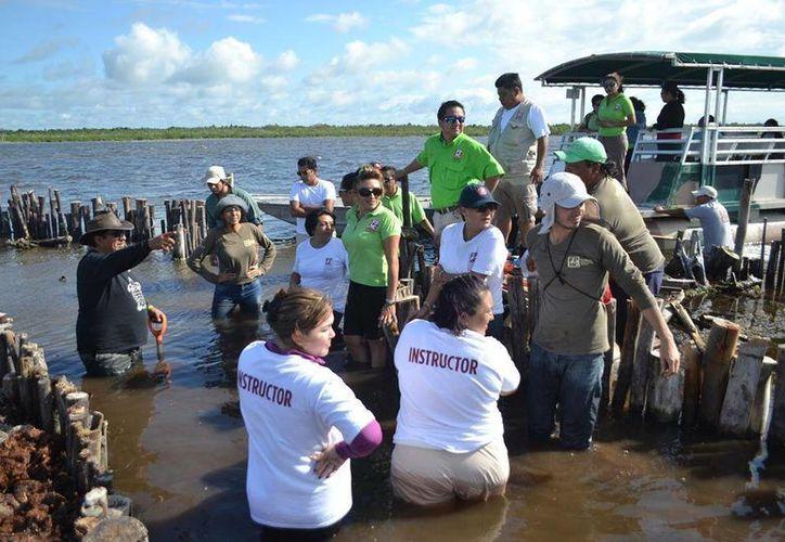 Se entregaron constancias de participación a los colaboradores de la fundación. (Gustavo Villegas/SIPSE)