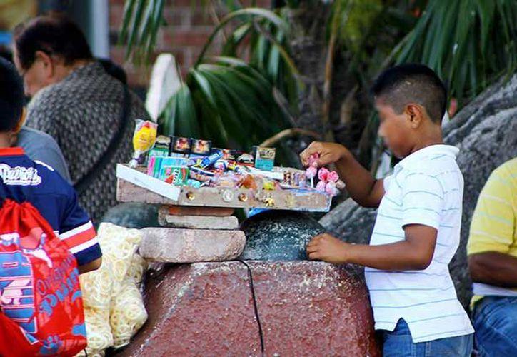 Los alumnos de estos planteles comunitarios son hijos de jornaleros que llegan cada temporada de la zafra, provenientes de Oaxaca, Campeche y Chiapas.