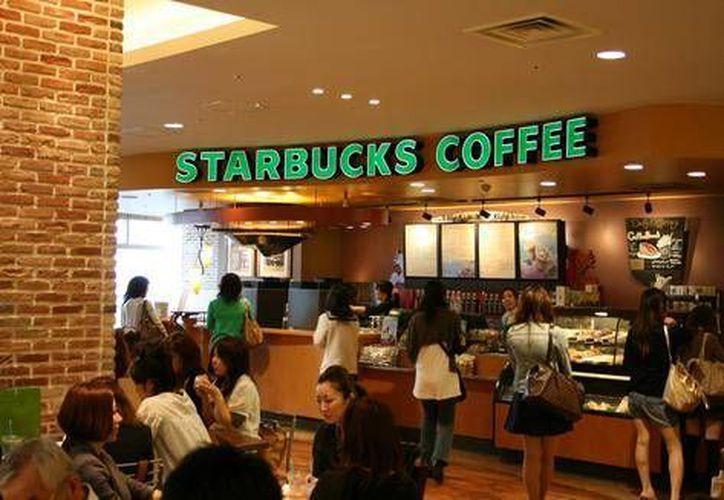 Aún no hay un lugar definido para establecer el Starbucks en Chetumal. (Contexto/Internet)
