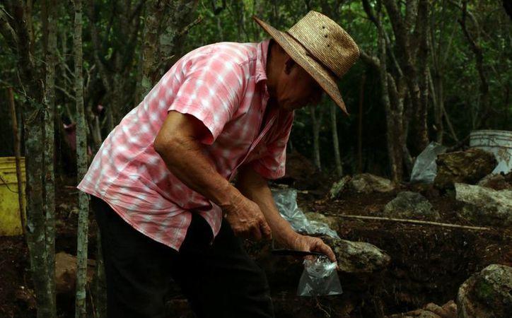 Arqueólogos trabajan en el salvamento de piezas prehispánicas en Yucatán, ubicadas donde se instalarán turbinas eólicas. (SIPSE)