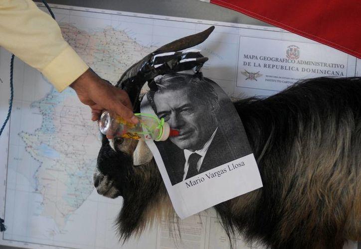 Manifestantes colocaron una fotografía del premio Nobel de Literatura sobre los cuernos de un chivo, un biberón y una mamila. Acusaron al escritor de calumniar al pueblo dominicano. (EFE)