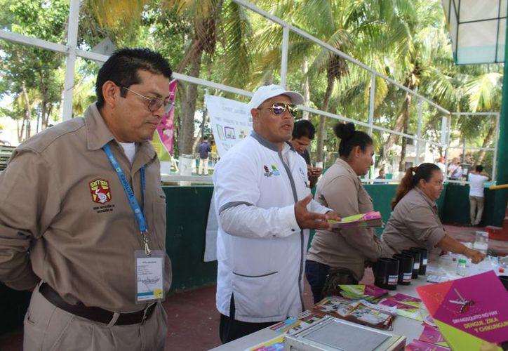 Inician en Tulum actividades de eliminación el mosco. (Foto: Sara Cauich/SIPSE).