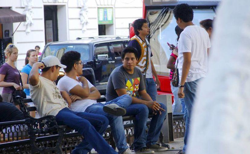 La violencia induce a la juventud a caer en el vicio del alcohol y las drogas.