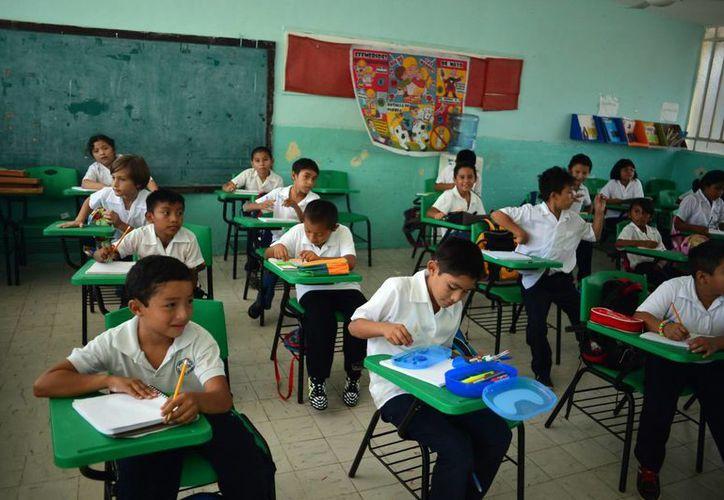 Yucatán registra avances en diversas evaluaciones, como el Programa Internacional para la Evaluación de Estudiantes. (Milenio Novedades)