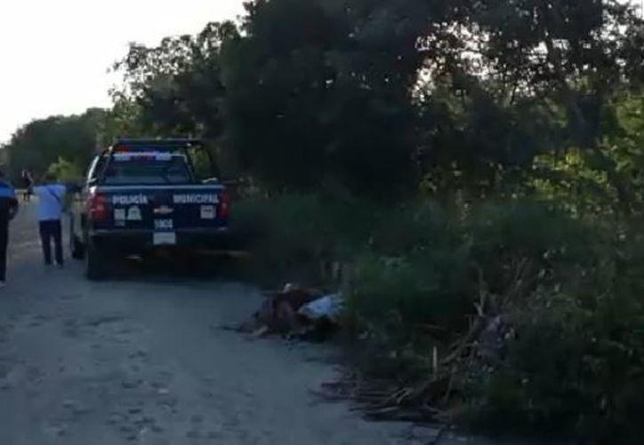 Al lugar llegaron los elementos policíacos, quienes se encargaron de acordonar el área. (Video: Transmisión De Peso)