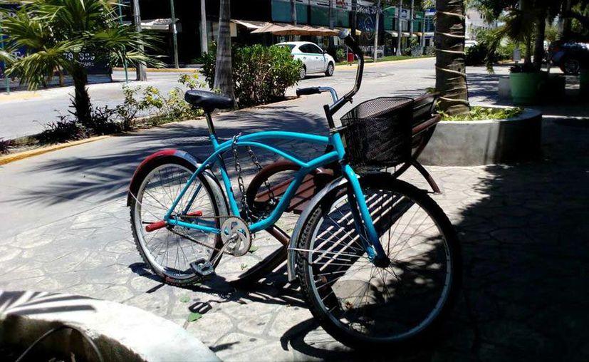Usuarios de bicicletas los sujetan mediante cadenas a bancas, árboles y postes de luz. (Adrián Barreto/SIPSE)