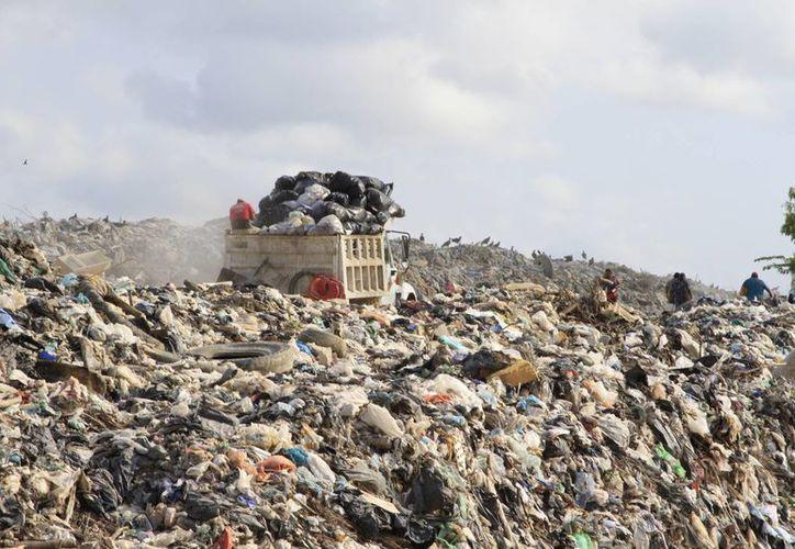 La basura recolectada va al relleno sanitario de Othón P. Blanco, que está a poco más de tres kilómetros de la comunidad. (Ángel Castilla/SIPSE)