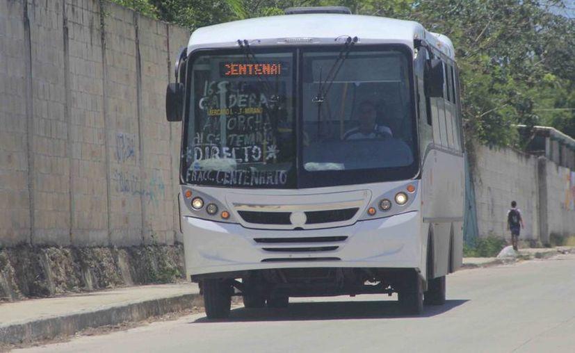La empresa de transporte no contaba con seguro de los camiones. (Gerardo Amaro/SIPSE)
