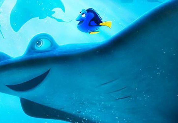 'Buscando a Dory' es la nueva apuesta de Pixar y Disney que se estrenará en las salas del país en julio de este año. (Facebook: Buscando a Dory)