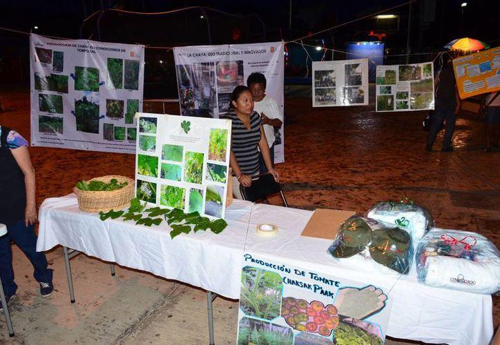 El evento fue realizado en el parque central de la cabecera municipal. (Tony Blanco/ SIPSE)