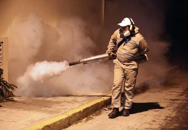 Imagen de contexto. El gobierno de Chile quiere erradicar el mosco del zika en la Isla de Pascua. (Notimex)