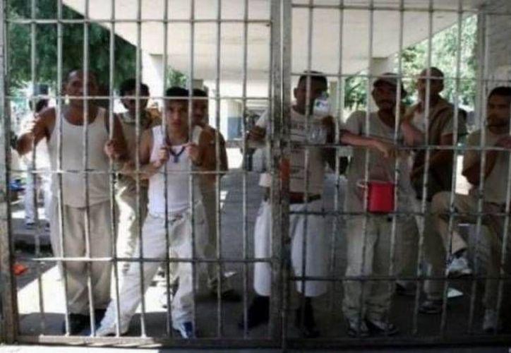 Garantizan a los reclusos un trato digno durante todo su proceso de reinserción social. (SIPSE)