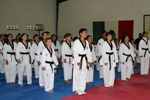 Convivencia y talento en clínica de taekwondo