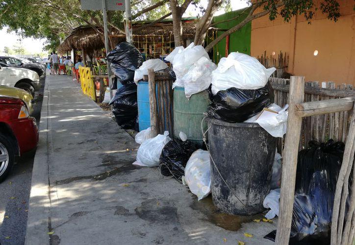 Ciudadanos de Playa del Carmen tienen la cultura de la separación de residuos pero no de reciclaje. (Adrián Barreto/SIPSE)