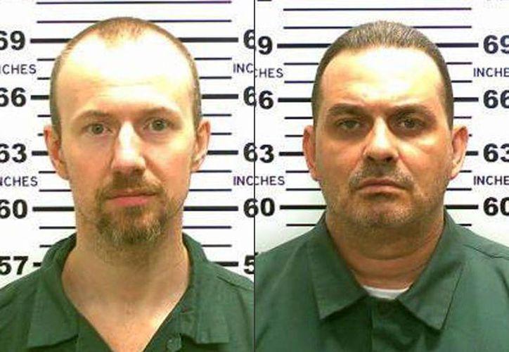 Las fotos publicadas por la policía de Nueva York muestran a los reclusos David Sweat (izq) y Richard Matt, quienes se fugaron de la prisión de máxima seguridad del estado. (AP)