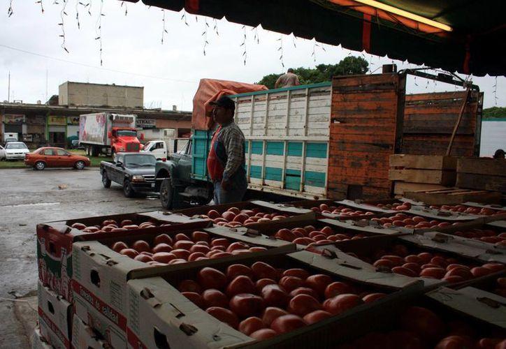 Las heladas y los aumentos en costo del transporte alzaron hasta un 20 % el precio de diversas frutas y verduras en Yucatán. (Milenio Novedades)