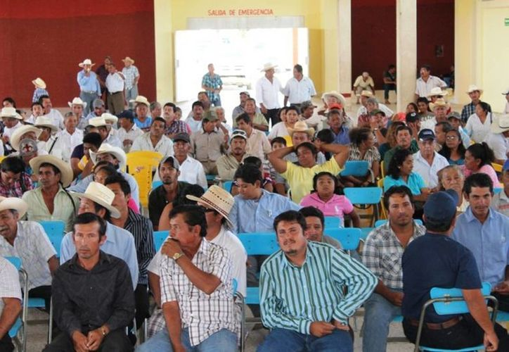 La Asociación de Ganaderos cuenta con 466 socios y menos del 50% acude a las reuniones o renueva sus datos. (Edgardo Rodríguez/SIPSE)