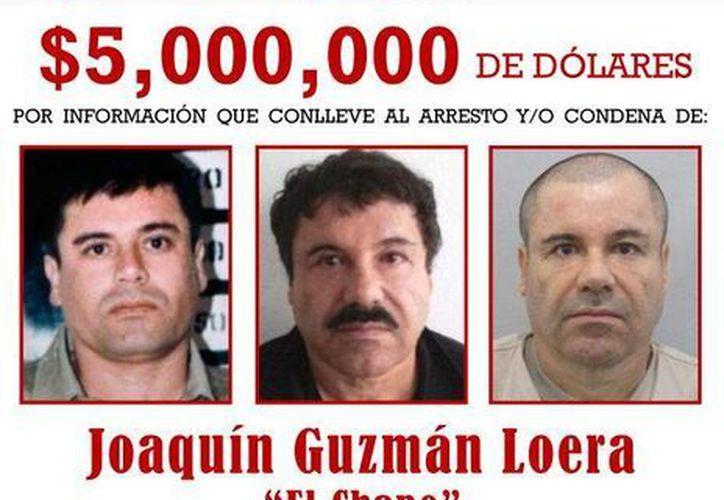 """Imagen del cartel distribuido por la Agencia contra el Narcotráfico de Estados Unidos (DEA) que muestra al narcotraficante mexicano Joaquín """"El Chapo"""" Guzmán. (EFE/Archivo)"""