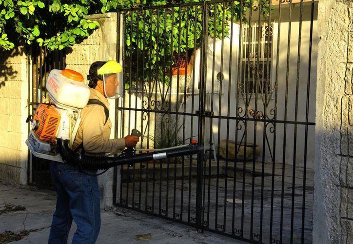 Las motomochilas entrarán a los hogares para fumigarlos. (Milenio Novedades)