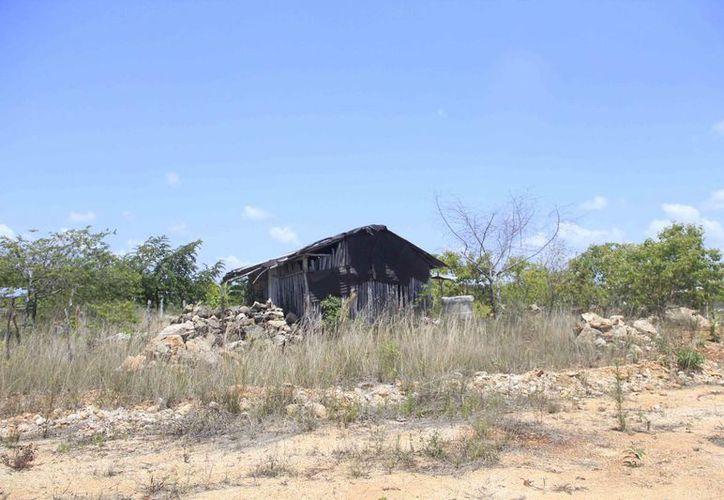 Los asentamientos irregulares en Chetumal pasaron de ser ocho el año pasado, a 11 este año. (Harold Alcocer/SIPSE)