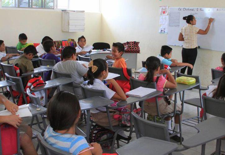 Sólo 134 profesores obtuvieron un pase para acceder a un plaza docente en Quintana Roo. (Ángel Castilla/SIPSE)