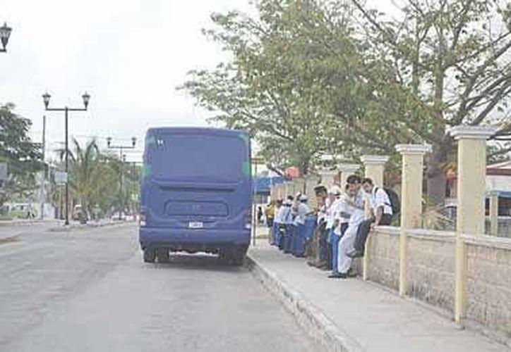 """Cuando no es """"hora pico"""", los autobuses que hacen paradas en diversos puntos del centro no provocan ningún problema vial. (Rossy López/SIPSE)"""