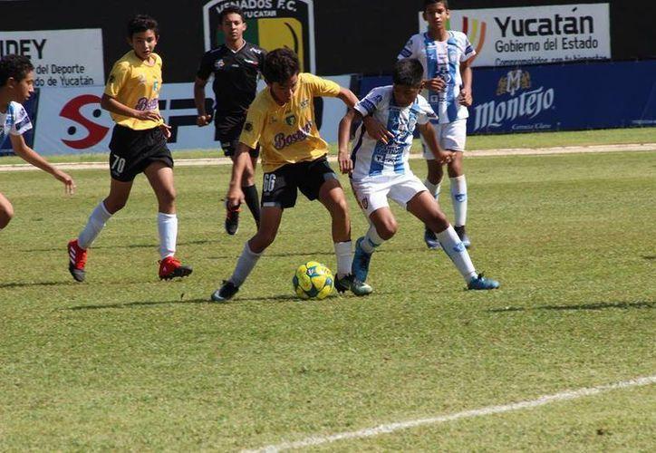 Venados Cantera Sub-13 logró una sufrida victoria ante Pachuca Cancún, para poder sumar tres puntos importantes.(Milenio Novedades)
