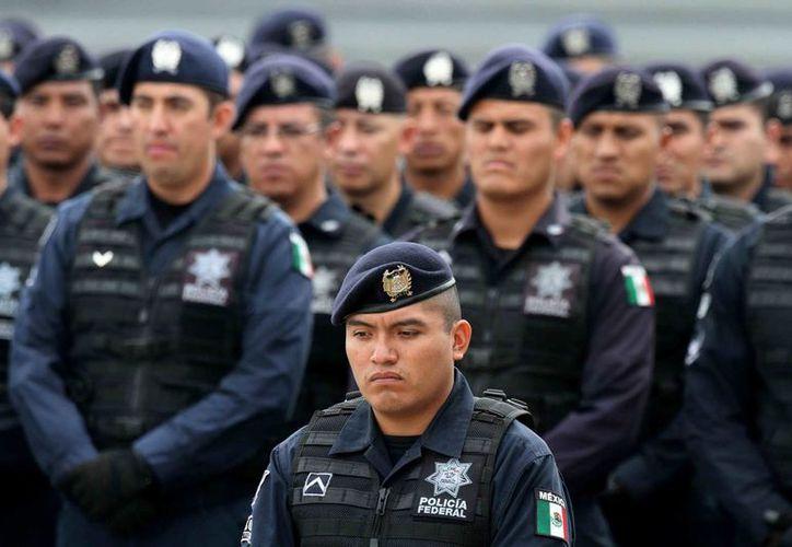 Sancionarían a policías federales que evadan las evaluaciones de Control de confianza. (Archivo Notimex)