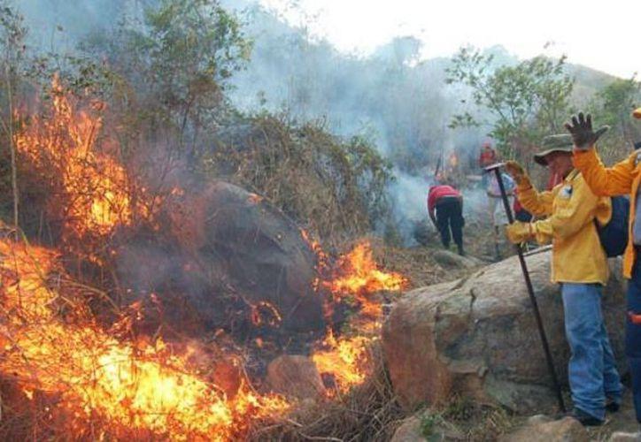 La brigada municipal de Ameca conformada por 12 integrantes está capacitada para el combate de incendios forestales. (Contexto/Internet).