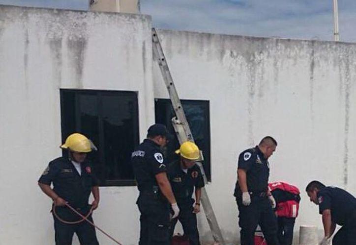 El hombre recibió una descarga de electricidad al tocar unos cables. Imagen de los paramédicos al momento de atender al electrocutado. (Milenio Novedades)