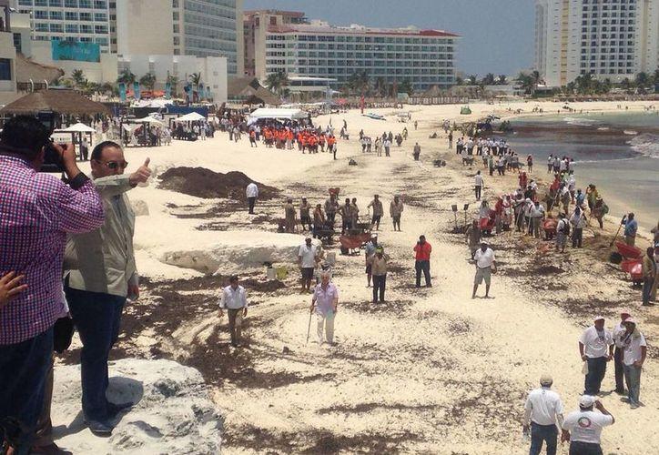 En las playas de Cancún 400 personas realizan jornadas de limpieza. (Redacción/SIPSE)