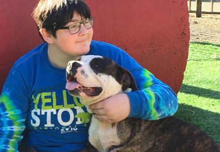 Quinn, niño con cáncer que perdió la pierna con Logan, su amoroso perro de tres piernas. (mnn.com)